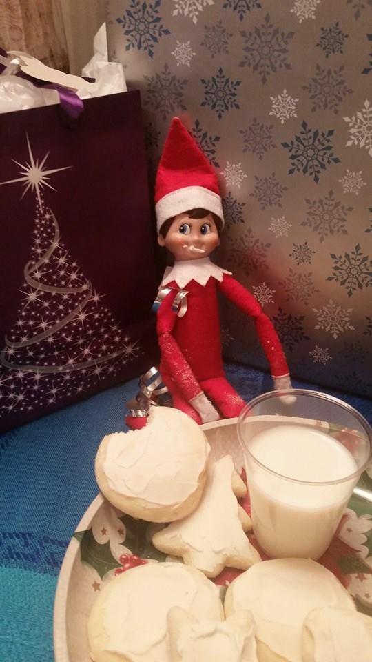 elf in the cookies