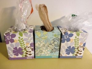 Kleenex Boxes DIY